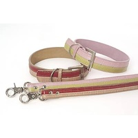 DOGUE Two Tone Collar